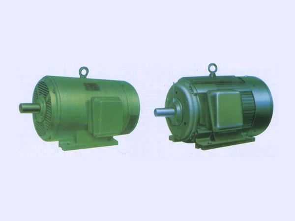 Y系列低压三相异步电动机